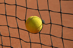 Tennis ball in the tennis net photo Stock Photos
