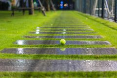 Tennis ball on wet walkway and grass after raining.  Royalty Free Stock Image