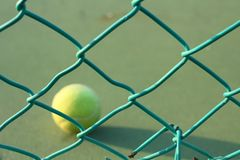 Tennis balls. On the court Stock Images