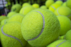 Tennis balls. Group of green tennis balls in the basket Stock Images