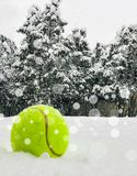 Tennis christmas ball on the snow on Christmas trees background, and falling snowflakes Sports card. Merry Christmas and Happy New royalty free stock image