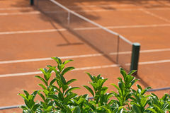 Tennis clay court with a grid Stock Image
