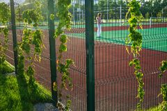 Tennis court with a woman behind a fence entwined with greenery. Stock Photo