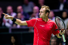 Tennis dell'interno di giro di Thiemo de Bakker ATP World Fotografia Stock Libera da Diritti