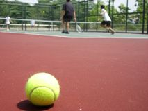 Tennis game and ball Royalty Free Stock Images