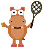 Tennis hippopotamus Royalty Free Stock Image