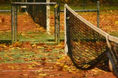 Tennis Net in Autumn. Two Tennis Nets on a court covered by fallen autumn leafs Stock Image