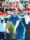 Tennis player David Goffin preparing for the Australian Open at the Kooyong Classic Exhibition tournament. Melbourne, Australia - January 9, 2018: Tennis player Stock Images