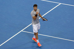 Tennis player Grigor Dimitrov Royalty Free Stock Photography