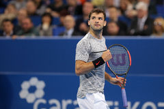 Tennis player Grigor Dimitrov Stock Image