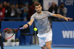 Tennis player Grigor Dimitrov Stock Photos