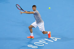 Tennis player Grigor Dimitrov Royalty Free Stock Image