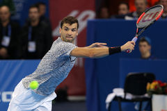 Tennis player Grigor Dimitrov Stock Images