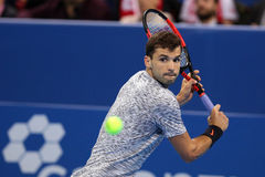 Tennis player Grigor Dimitrov Royalty Free Stock Photo
