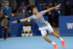 Tennis player Grigor Dimitrov Royalty Free Stock Photography