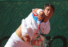 Tennis player Jesse Huta Galung Royalty Free Stock Images