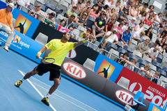 Tennis player Jo-Wilfried Tsonga Royalty Free Stock Images
