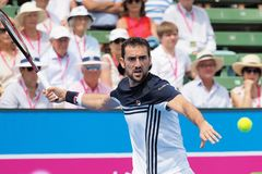 Tennis player Marin Cilic preparing for the Australian Open at the Kooyong Classic Exhibition tournament. Melbourne, Australia - January 10, 2018: Tennis player Stock Images
