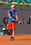 Tennis Power Horse World Team Cup 2012 Royalty Free Stock Images