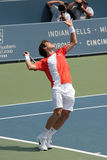 Tennis Professional Royalty Free Stock Photography