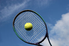 Tennis racket and ball. Yellow tennis ball in centre of racket Royalty Free Stock Image