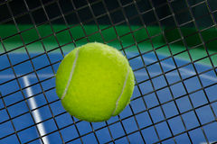 Tennis racket sweet spot Royalty Free Stock Photo