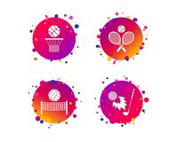 Tennis rackets with ball. Basketball basket. Vector. Tennis rackets with ball. Basketball basket. Volleyball net with ball. Golf fireball sign. Sport icons vector illustration