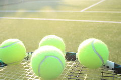 Tennis raquet and balls Stock Image