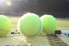 Tennis raquet and balls Stock Photos