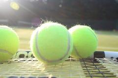 Tennis raquet and balls. Tennis racquet and tennis balls on a tennis court Stock Photos