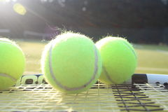 Tennis raquet and balls. Tennis racquet and tennis balls on a tennis court Royalty Free Stock Image