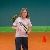 Tennis school and nandayus nenday Stock Photography