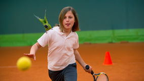 Tennis school and nandayus nenday Royalty Free Stock Image