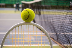 Tennis sport. Tennis is a racket sport and in Olympic sport and is played at all levels of society and at all ages Royalty Free Stock Photos