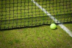 Tennisbal Stock Fotografie
