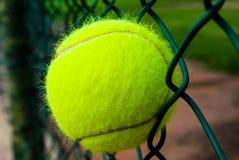 Tennisbal in een omheining wordt geplakt die Stock Fotografie