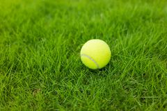 Tennisbal op de groene achtergrond van het grasgebied Royalty-vrije Stock Foto's