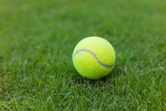 Tennisbal op de groene achtergrond van het grasgebied Stock Foto
