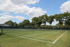 Tennisbal op grastennisbaan Stock Afbeeldingen