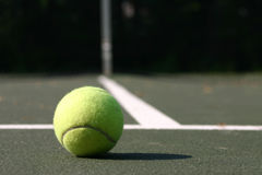 Tennisball Royalty Free Stock Photo