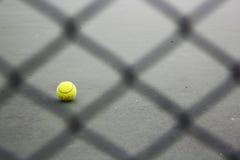 Tennisballs Stock Afbeeldingen