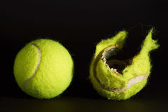 Tennisballs, dogs toy. Yellow tennis balls, one new and one used and destroyed Royalty Free Stock Photos