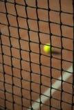 Tennisboll bak det netto Royaltyfria Foton