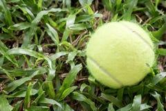 Tennisboll i gräsbakgrund fotografering för bildbyråer