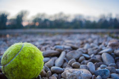 Tennisboll i naturen Royaltyfri Bild