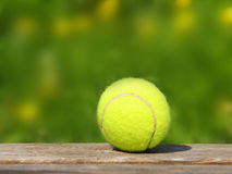 Tennisboll och äng (44) Royaltyfri Bild