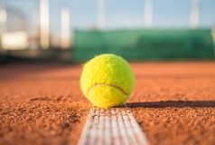 Tennisboll på den vita linjen Royaltyfria Foton