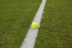 Tennisboll på grästennisbanan Arkivbild