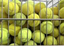 Tennisbollar i korg Arkivbild