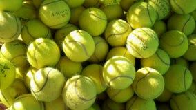Tennisbollar i solljus Royaltyfria Bilder